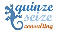 Quinze Seize consulting